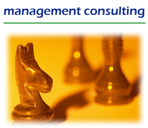 management_consulting_feathered